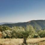 Niccone Valley Tuscany border Umbria Italy