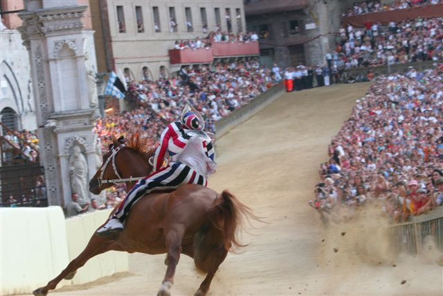 A horse takes the curve at the Palio In Siena, Tuscany