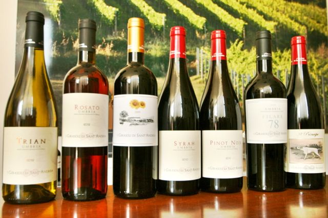 Wines from I Girasoli di Sant'Andrea winery