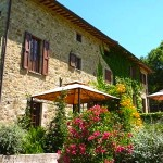 Pergola at the front of Casa Cordino